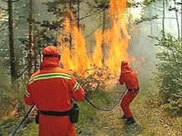 incendio_bosco.jpg