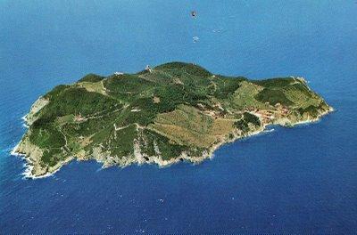 isola_gorgona.jpg