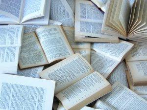 libri2.jpg