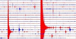 terremoto_grafico.jpg