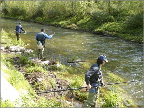 Pesca Alla Trota di Pesca Alla Trota e ai