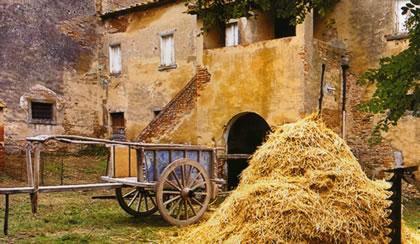 valdichiana-carro_1600-agricom-6.jpg