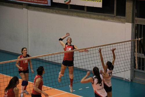 volley_arno_flickr_com_.jpg