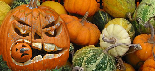 Coldiretti rileva che in Italia sono circa 13 milioni le persone che  festeggiano la notte del 31 ottobre af0dc26091bb